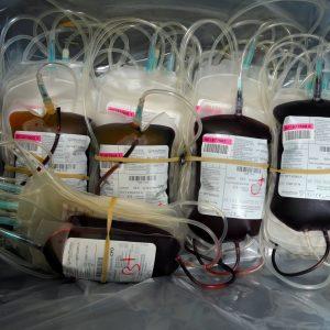 Nove Hospitais do SNS vão Avançar com Projetos de Redução de Transfusões de Sangue