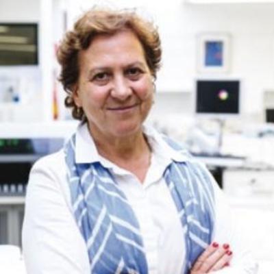 Graça Porto (Prof.)